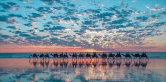 オーストラリアの医学生が受ける「へき地医療」の教育(結果発表編)