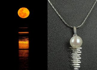 オーストラリアの医学生が見たブルームの真珠祭り