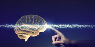 オーストラリアの医学部、最終学年の4発目の研修先は脳神経外科