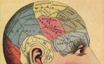 【驚愕】理研の脳センターでのぼくの仕事、数えたら9本の論文があることが判明