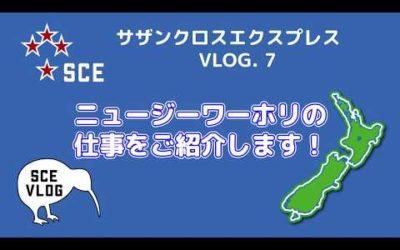 ニュージーワーホリの仕事をご紹介します Vlog 7
