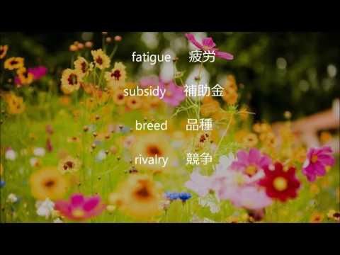英検準1級 単語②