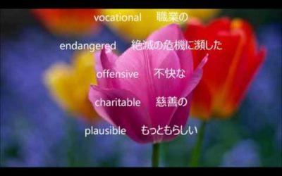 英検準1級 単語⑯