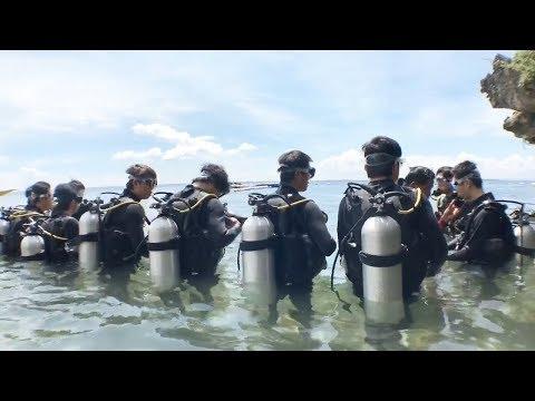 [フィリピン 英語 留学] SMEAG 語学学校 / 短期留学 : Live Fun Diving